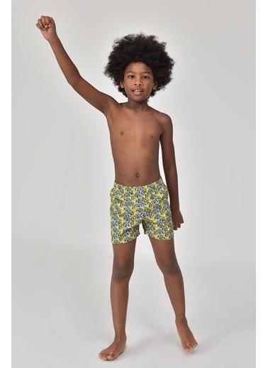 Bilcee  Erkek Çocuk Deniz Şortu Gs-8191 Renkli